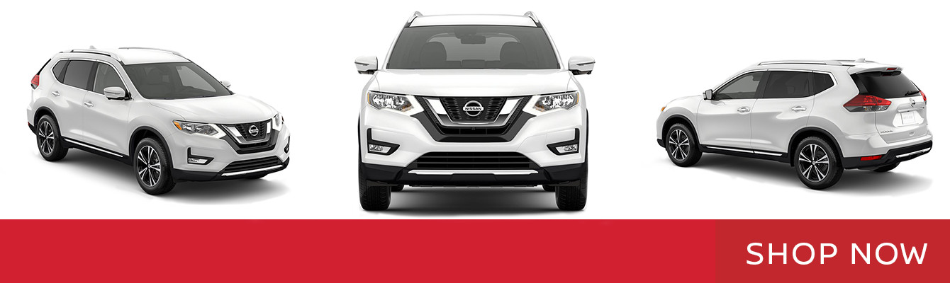 2017 Nissan Rogue in Preston